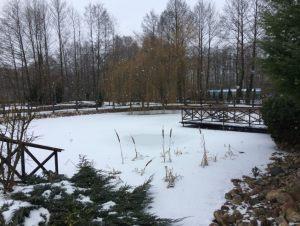 zima2017007